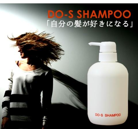do-s-sya500-08