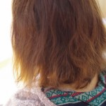 髪のダメージ加速型ヘアトリートメント その1
