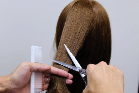 「トリミングカット 髪の毛」の画像検索結果